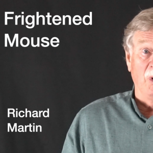 Frightened Mouse